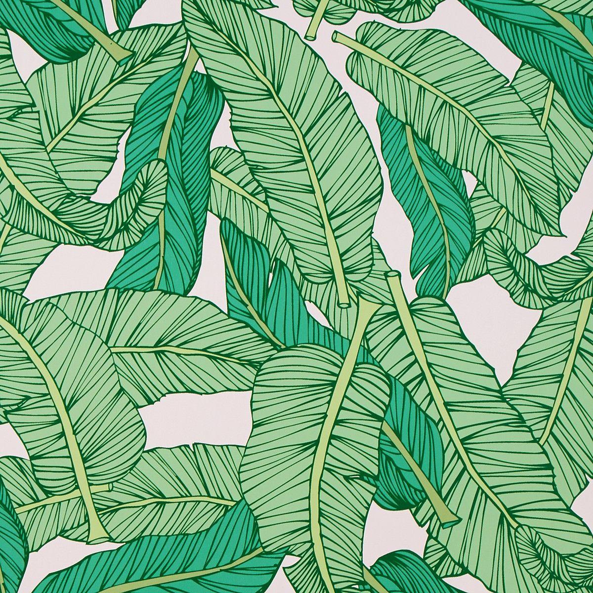 Banana Leaf Palm Tropical Wallpaper tropicalleaf