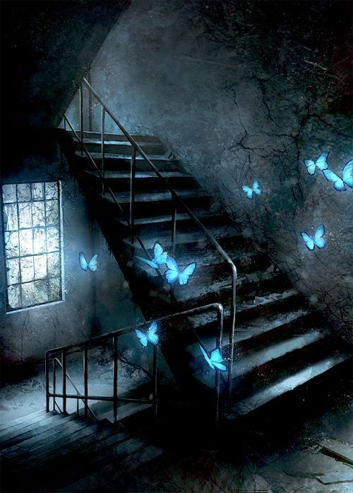 magical blue butterfly in an abondonned stairs dream pinterest