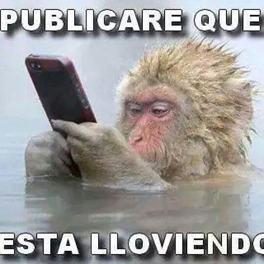 Pinche Frio Cute Memes Super Funny Funny Memes
