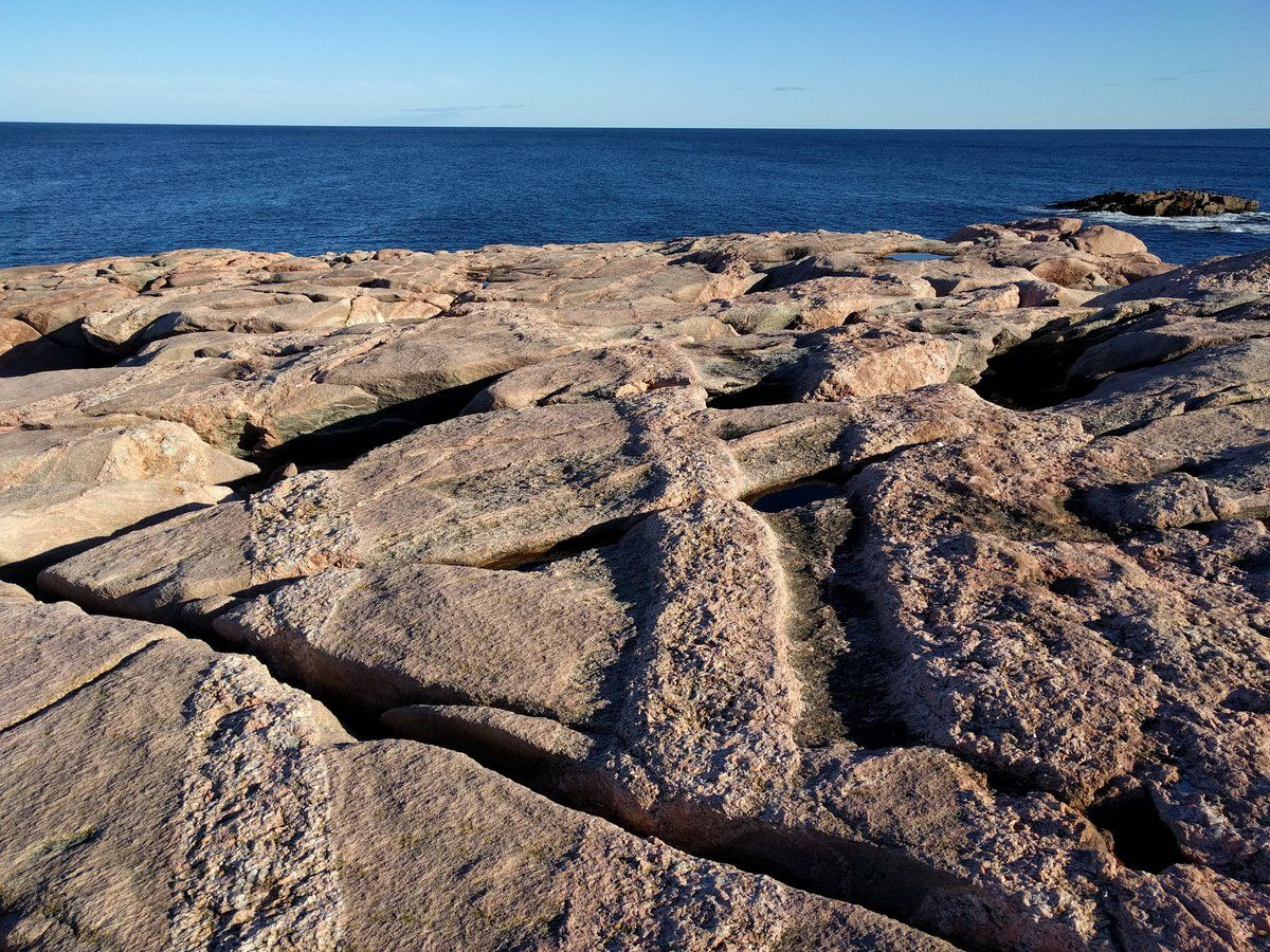 Differential weathering of pegmatite dikes, Green Cove ...
