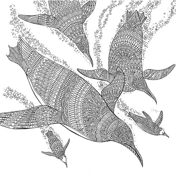The aquarium | Animales 10 | Pinterest | Animales