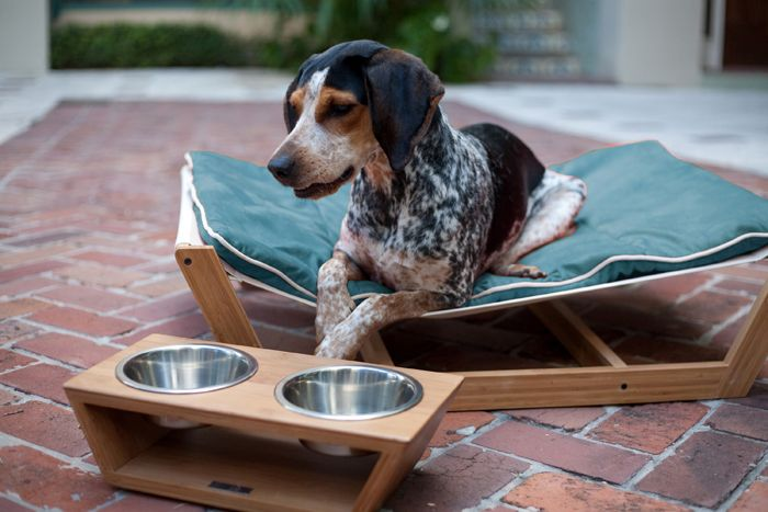 The Hammocks Sleeping Surface Responds To Your Pet S Body Weight