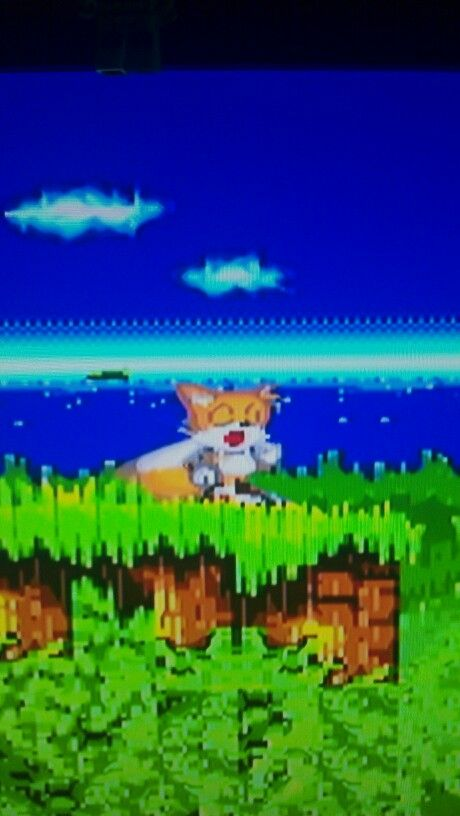 """Miles """"Tails"""" Prower from Sonic the Hedgehog 2 - my favourite fox!"""