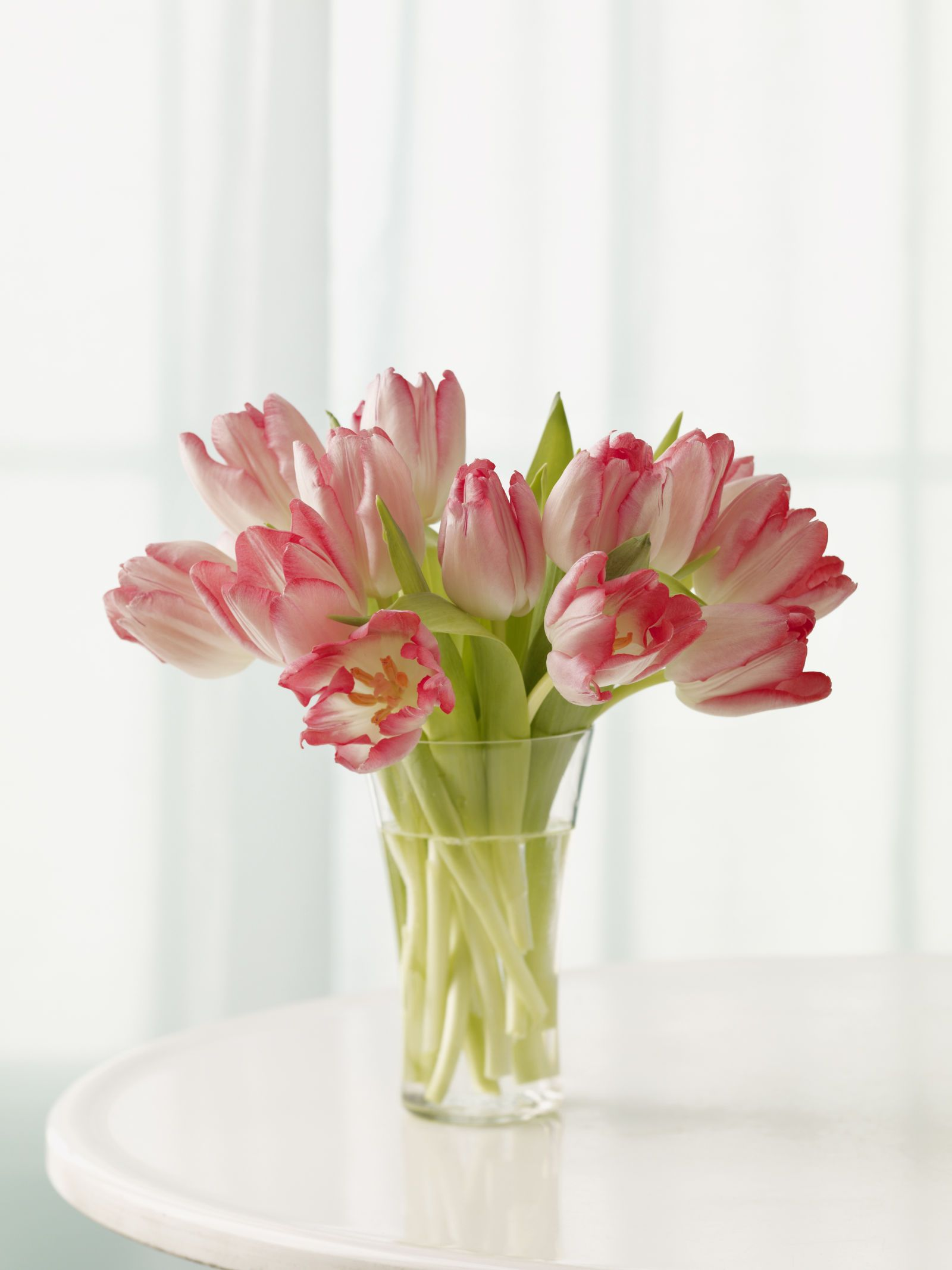 True or False: Flower Bouquets Make You Healthier | Flower bouquets ...