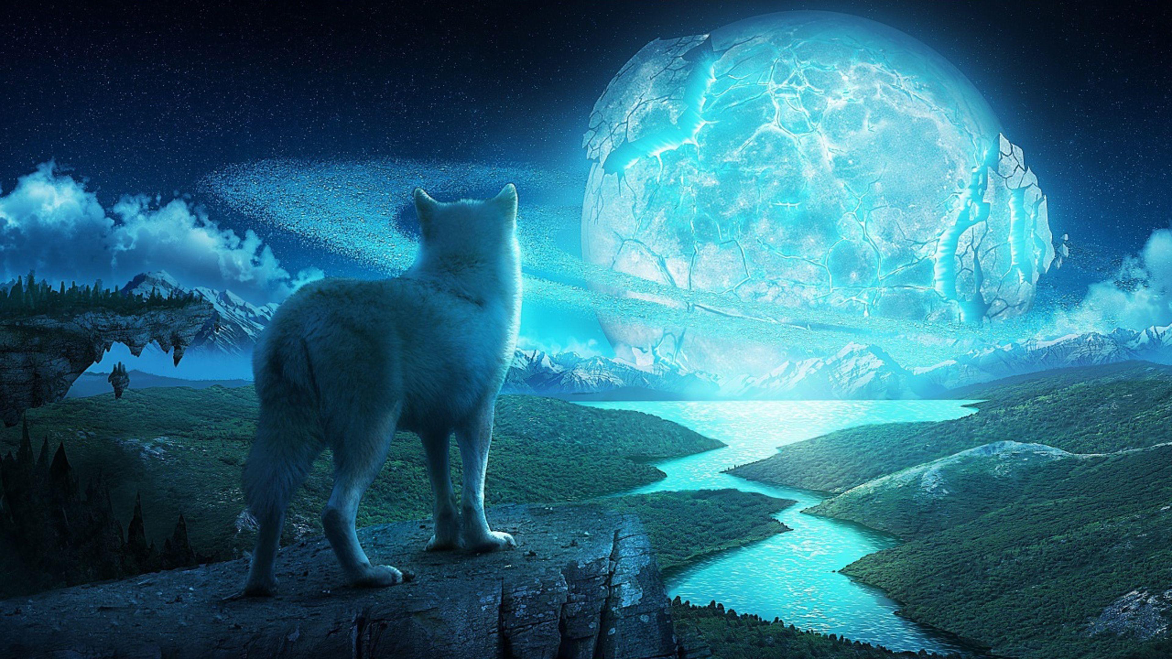 Wolf In A Fantasy World Ultra Hd 4k Wallpaper Wolf Background Wolf Wallpaper Fantasy Wolf