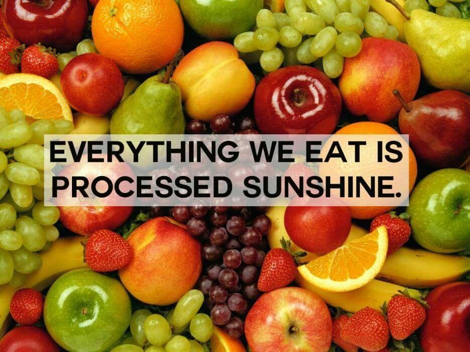 Everything we eat is processed sunshine fruit vitamin