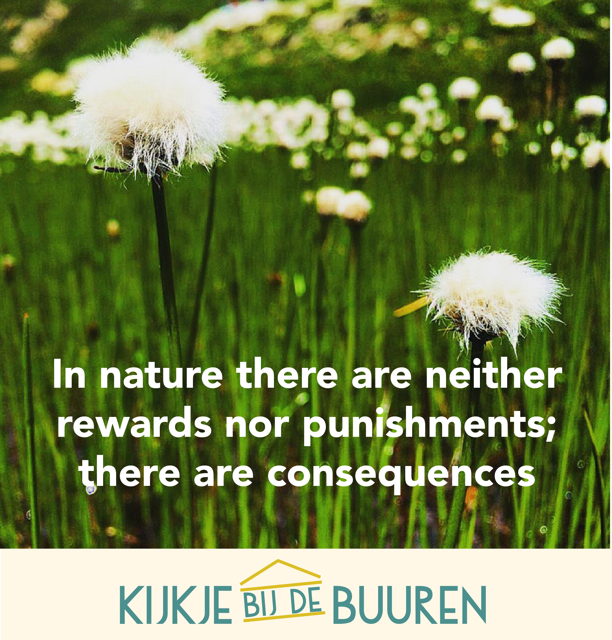 Citaten Over Natuur : Natuur quote nature flowers inspirerende quotes over