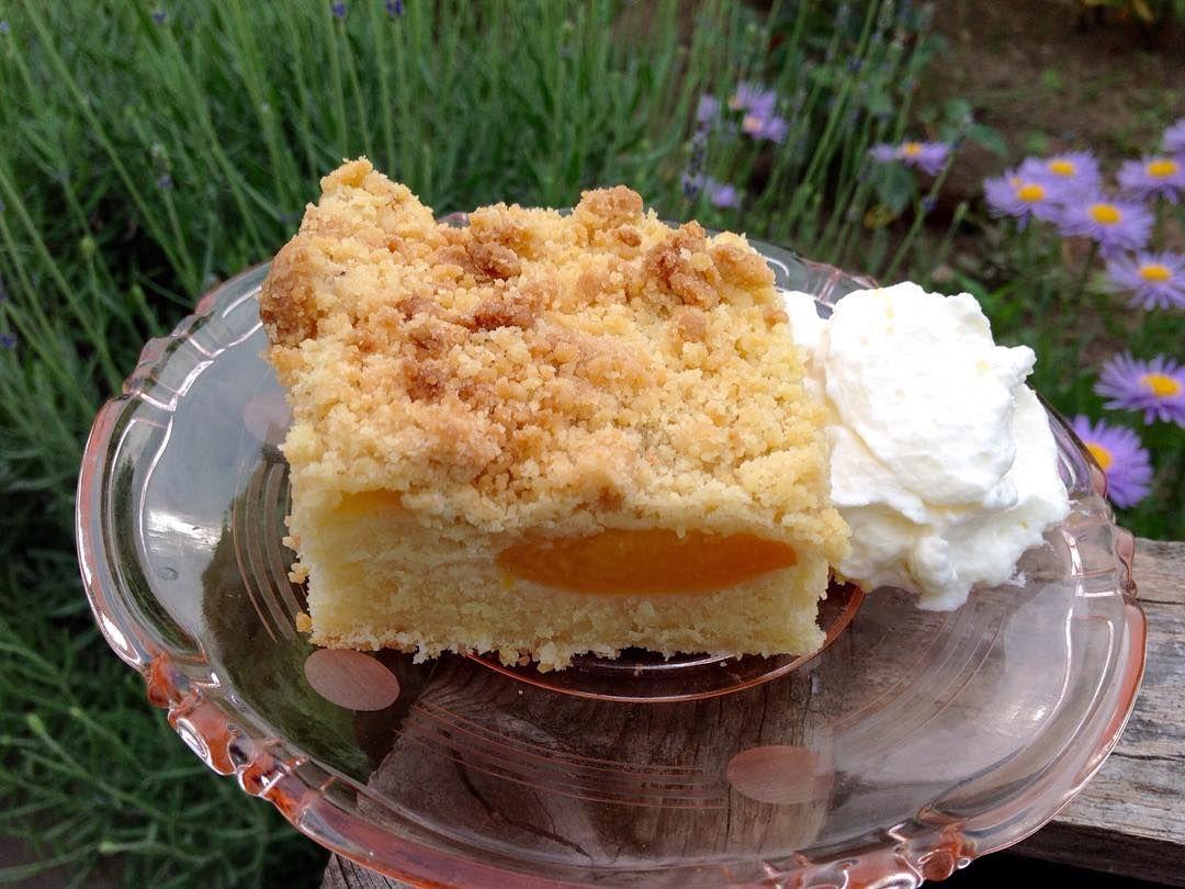 Aprikosenkuchen Vom Blech Ein Stuck Von Meinem Kostlichen Aprikosenkuchen Durch Die Buttermilch Im T Aprikosenkuchen Ruhrkuchen Mit Kirschen
