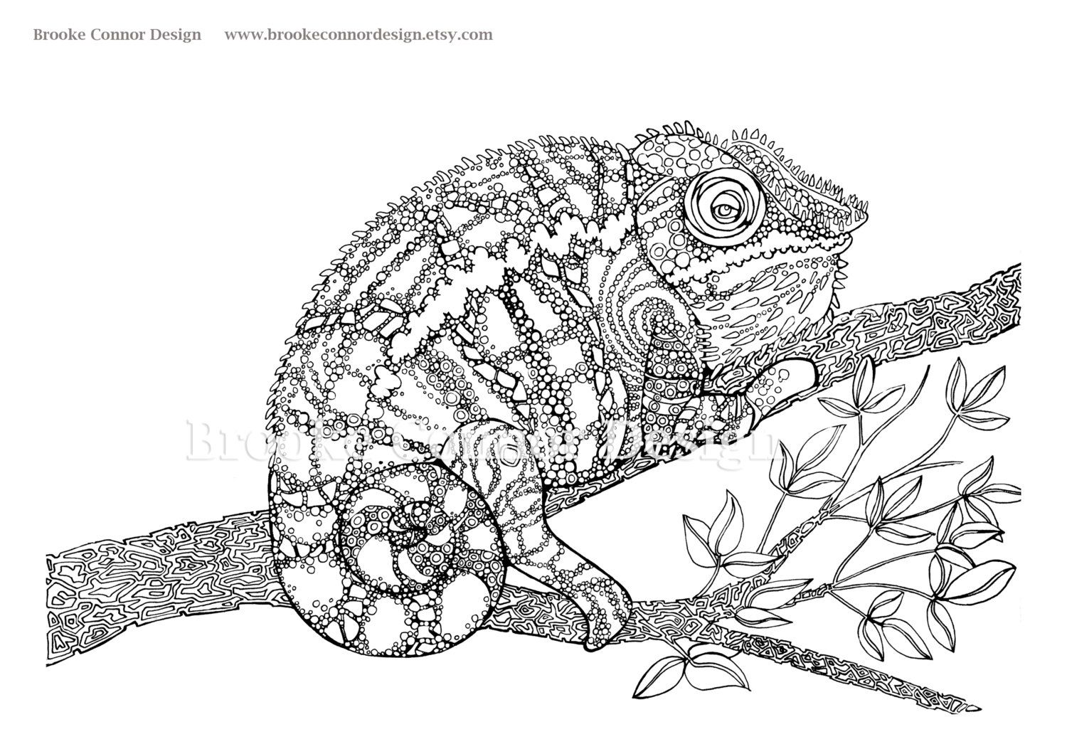 the chameleon coloring page super detailed