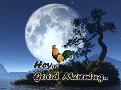 Good Morning Animation Images Bird Sound Effect Festival Chaska