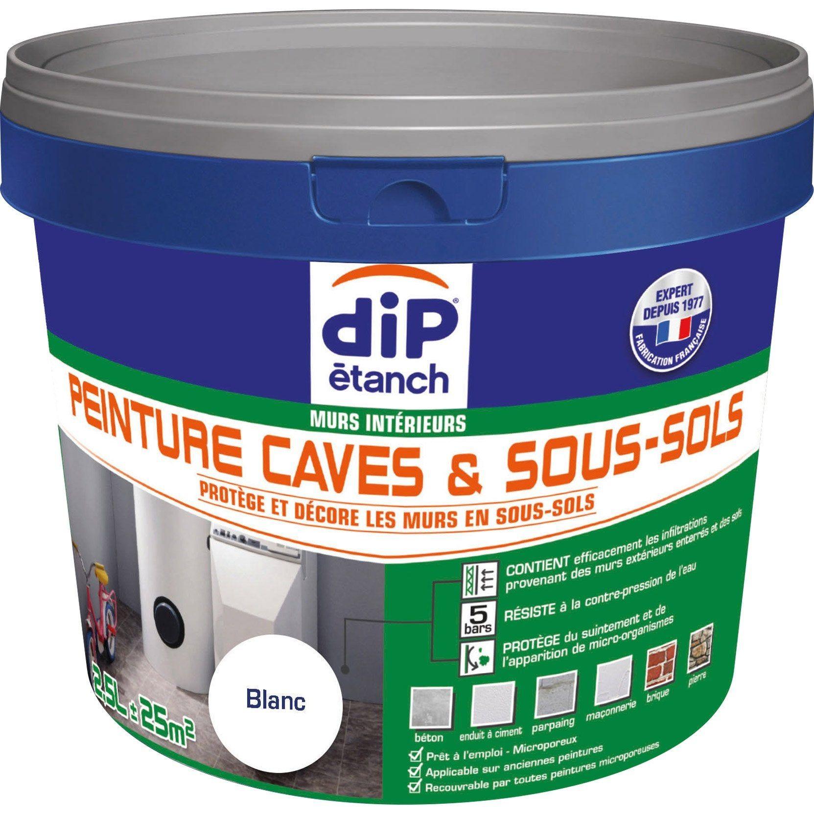 Peinture Cave Et Sol Peinture Cave Sous Sol Dip Blanc 2 5 L En 2020 Sous Sol Carrelage Et Etancheite