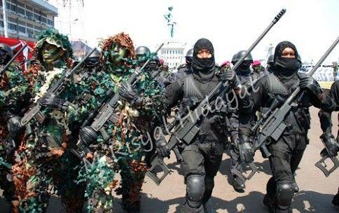 Indomiliter navy