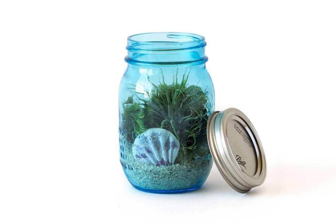Diy mason jar aquarium darby smart decor love this idea for