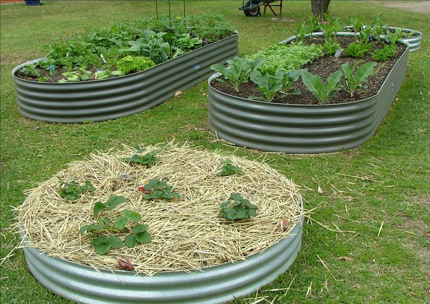 Homemade Galvanized Raised Garden Beds Garden Tank