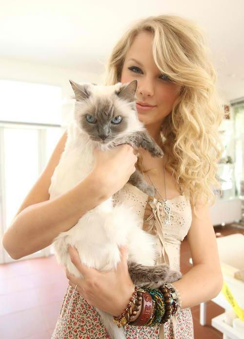 Taylor Swift With Cat Siamese Pinterest Taylor Swift Taylor