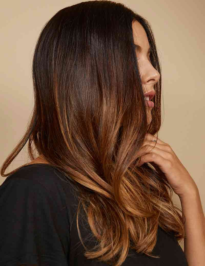 Redken Beyond Brunette Tortoise Shell Brown Hair With Toffee Brown Ombre Light Hair Color Balayage Brunette Brown Hair Colors