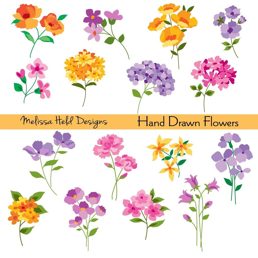 Hand Drawn Flowers Clipart Hand Drawn Flowers Draw Flowers And