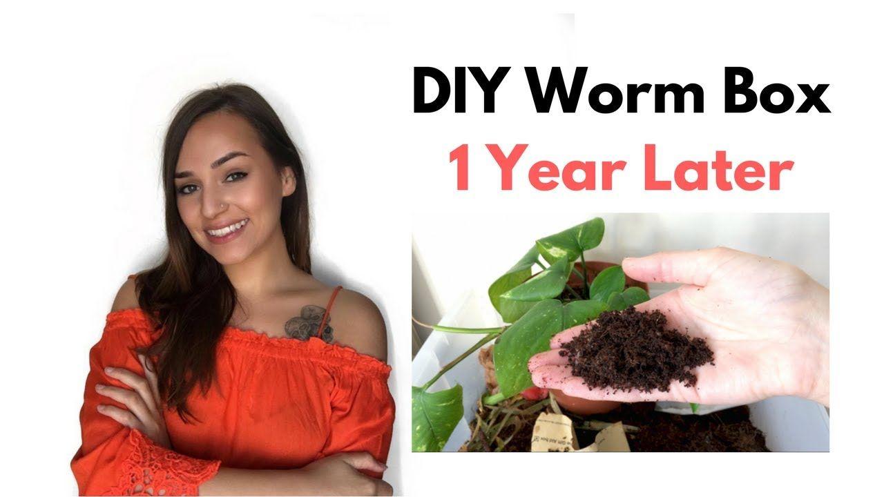 Diy worm bin 1 year update youtube worm bin worm