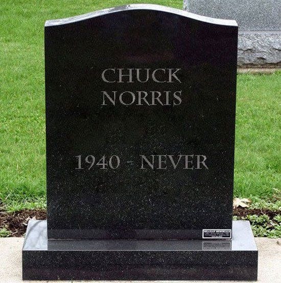 Chuck Norris Is The Man Chuck Norris Chiste Grafico Humor