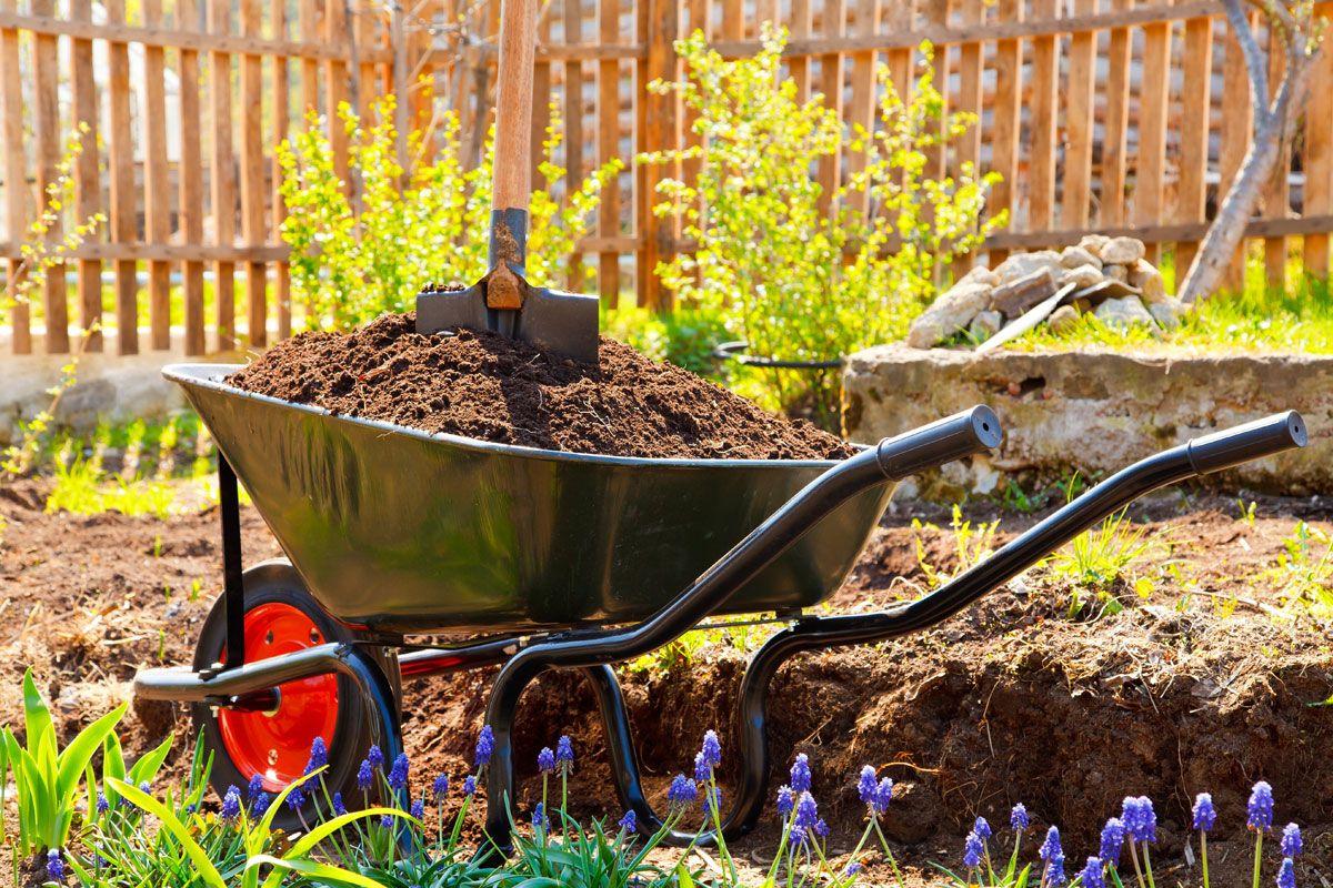 Obstgeholze Schon Gedungt Jetzt Aber Schnell Kompost Obstgeholze Komposterde
