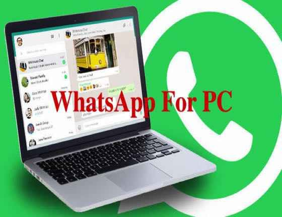 WhatsApp 0.3.4375 for Windows /Mac OSX and Android (x64/86