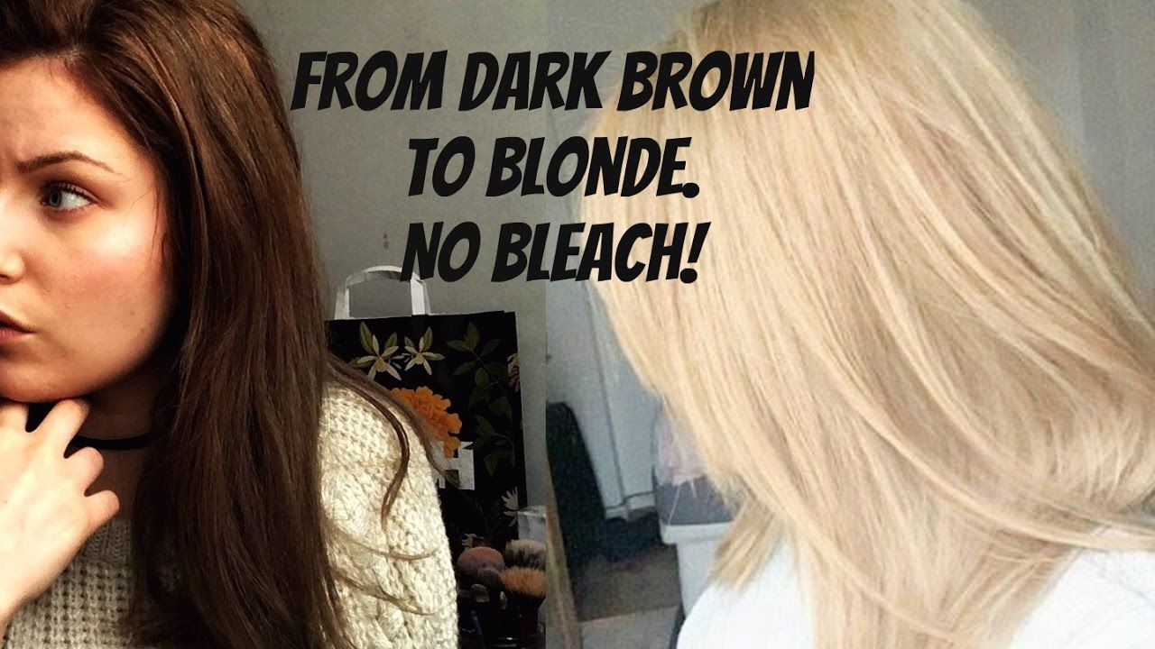 How To Go From Dark Brown To Blonde No Bleach No Damage Bleaching Dark Hair Brown Hair Dye Blonde Dye