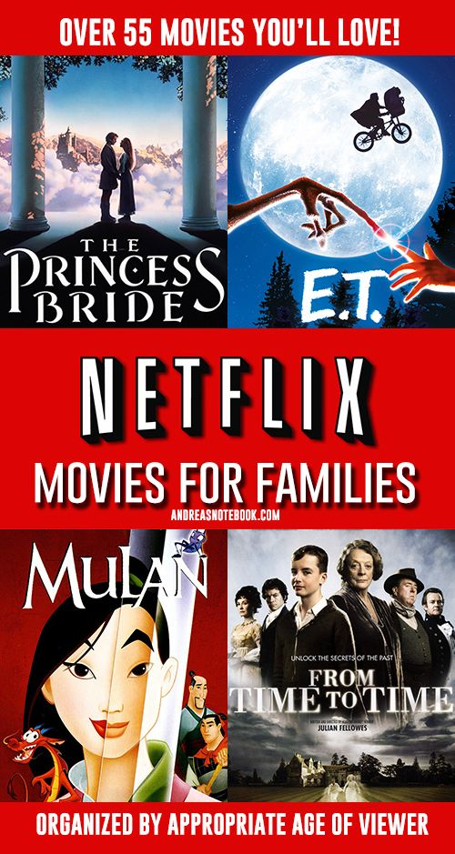 Netflix Movies For Families Andreas Notebook Entertainment