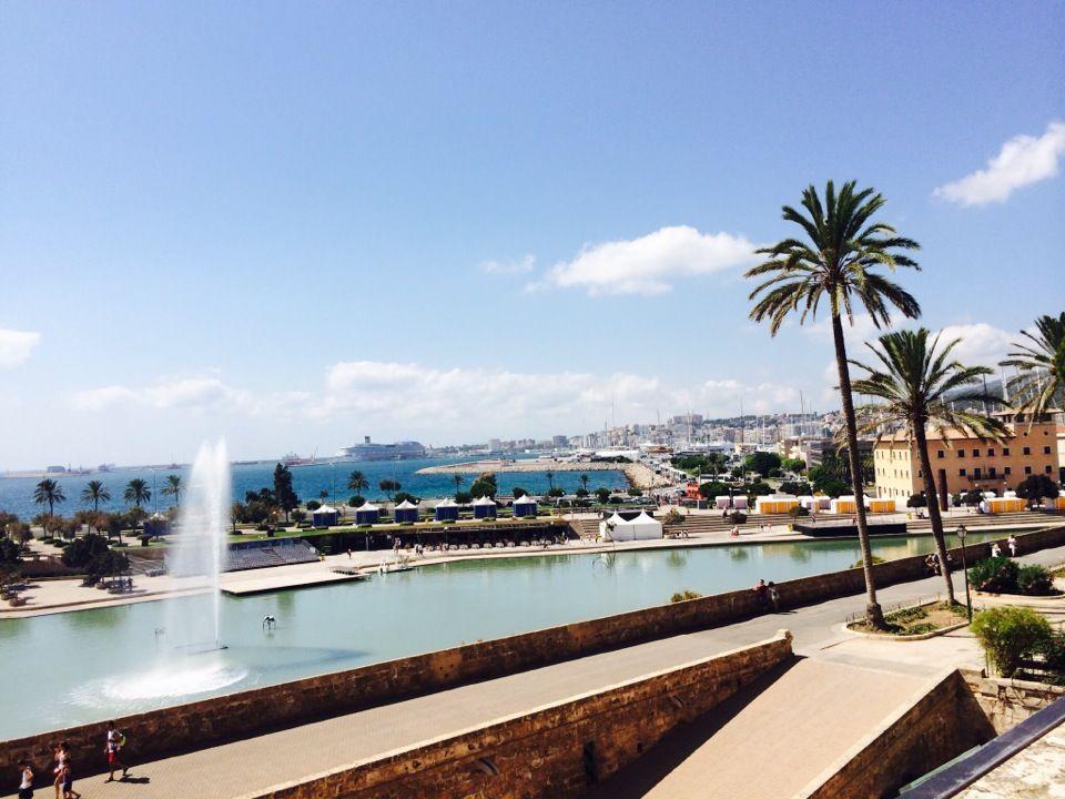 Palma de Mallorca Maiorca, Palme e Spagna