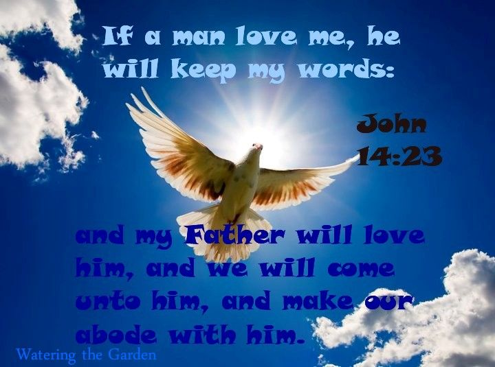 Promise To Love And Abode With Those Who Love Him And Keep His Words Jesus Answered And Said Unto Him If A Man Love Me He Will Keep My Words And My