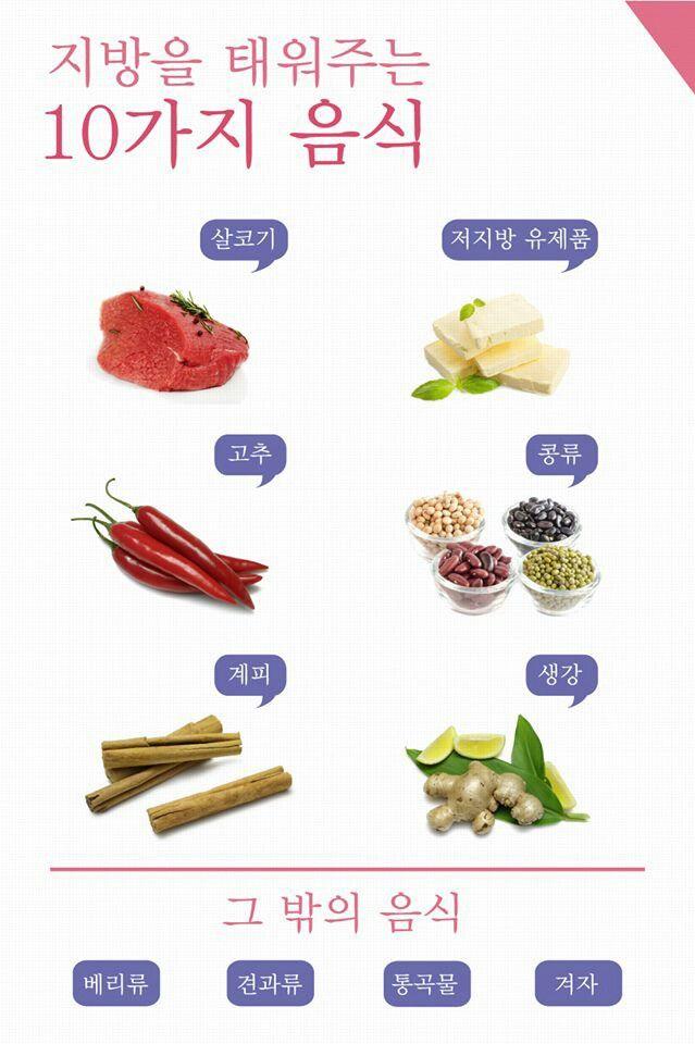 다이어트 식품