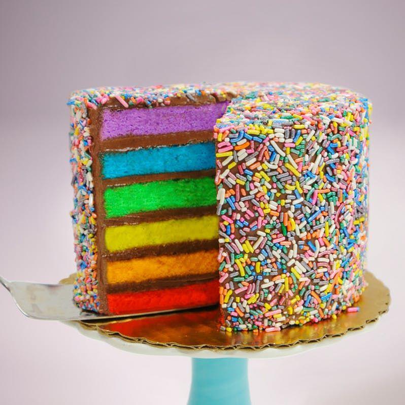 Chocolate fudge rainbow cake savoury cake rainbow cake