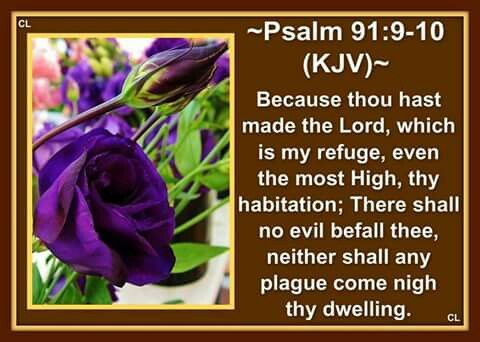 Psalms 91 9 10 11 Kjv Holy Bible King James