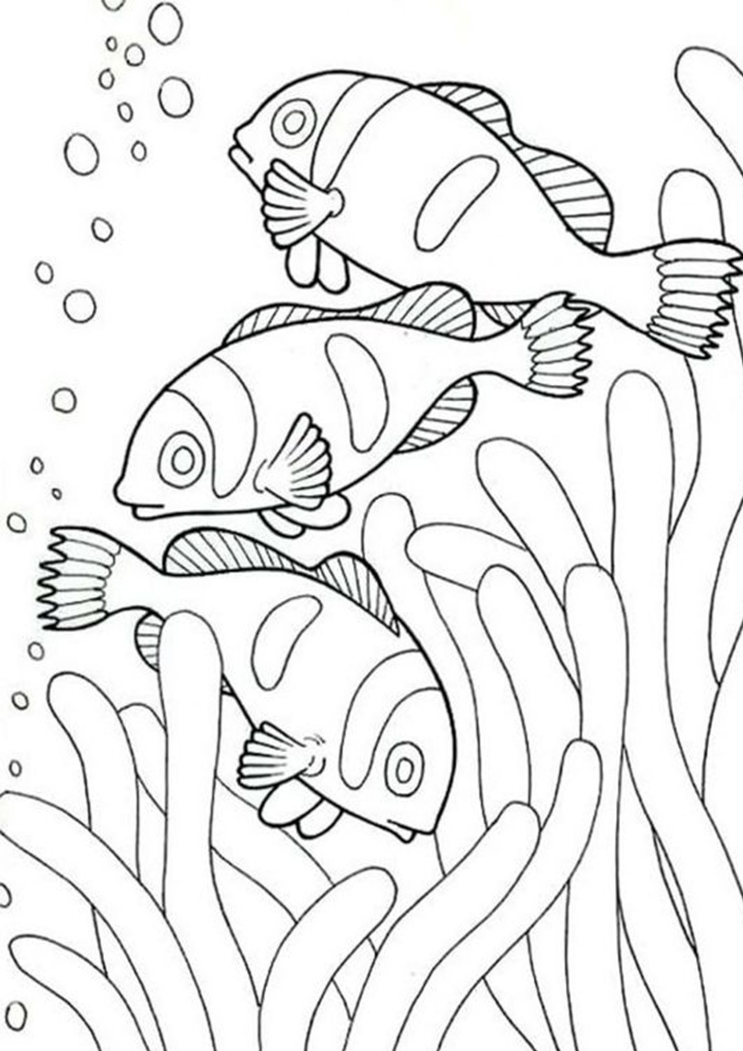 Free Easy To Print Fish Coloring Pages Fish Coloring Page Animal Coloring Pages Animal Coloring Books