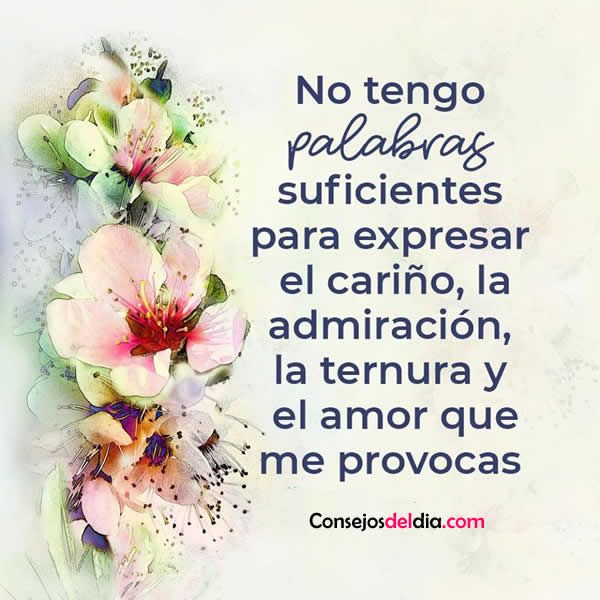 Ternura Y Amor Frases Con Fotos Love Quotes Reflection Quotes Y