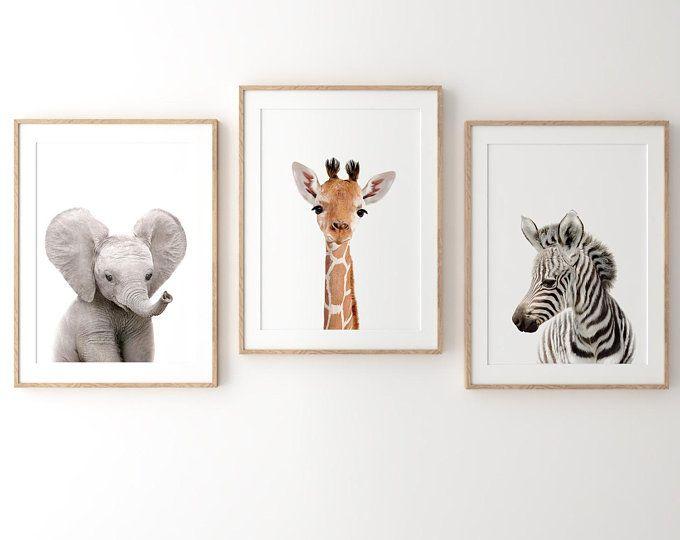 Set of 4 UNFRAMED Safari Baby Animals Nursery Decor Wall Art Prints - Giraffe, Elephant, Zebra, and Lion Cub 8x10, 12x18, 16x20