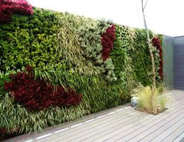 Jardines verticales y muros verdes con tecnolog a modular for Jardines verticales en balcones