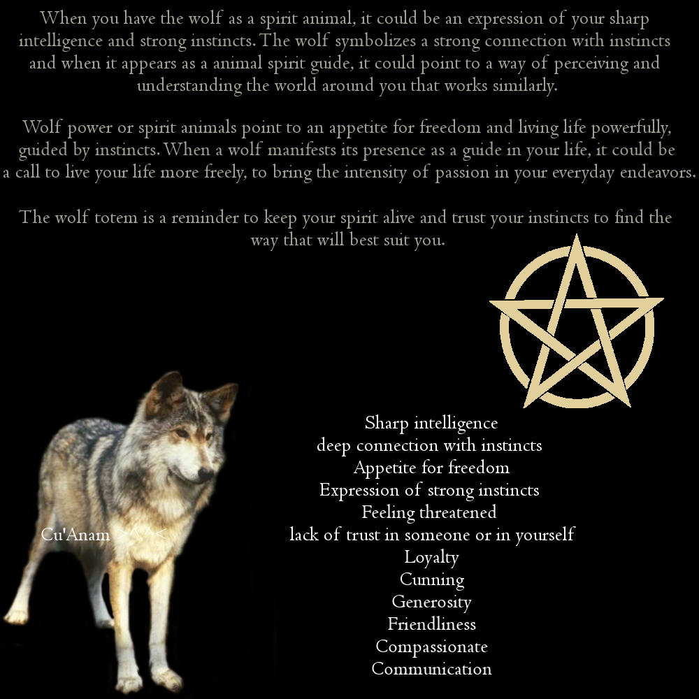 Spirit animal wolf zodiac totems pinterest wolf animal spirit animal wolf biocorpaavc