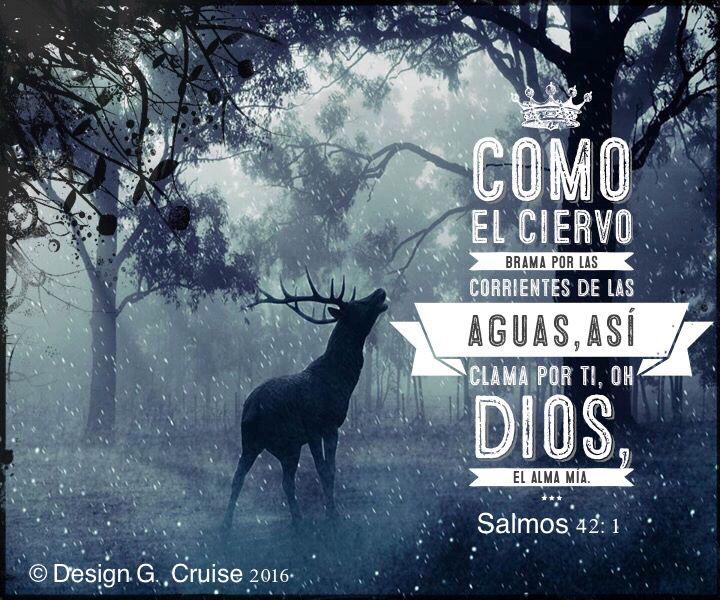 Como el ciervo brama por las corrientes de las aguas,Así clama por ti, oh Dios, el alma mía. Salmos 42:1