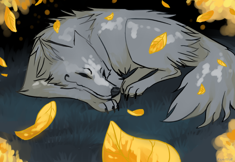 Fall by on DeviantArt Anime