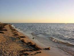 احجز الان اى عقار من العقارات الموجوده فى خليج سلمان مع موقع معمار فقد ارسل طلبك الينا Http Www Meamar Net Outdoor Water Beach