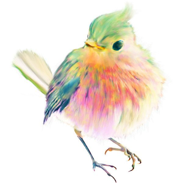 Pin by the vintage idiot on bird art pinterest for Pretty watercolor pictures