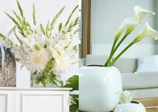 Kompozycje Z Kwiatow Letnich Kolorowe Mieczyki I Kalie W Wazonie Zielony Ogrodek Vase Glass Vase Decor