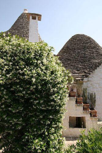 Alberobello - Puglia 33 Trullo Sovrano
