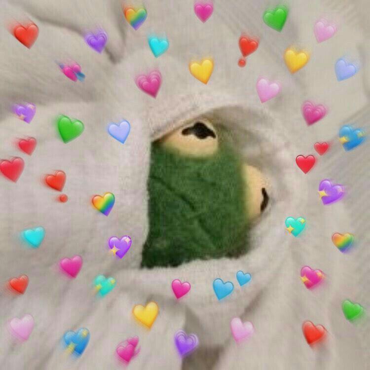 Pin By Wild Random On Memes Cute Love Memes Aesthetic Memes Frog Wallpaper