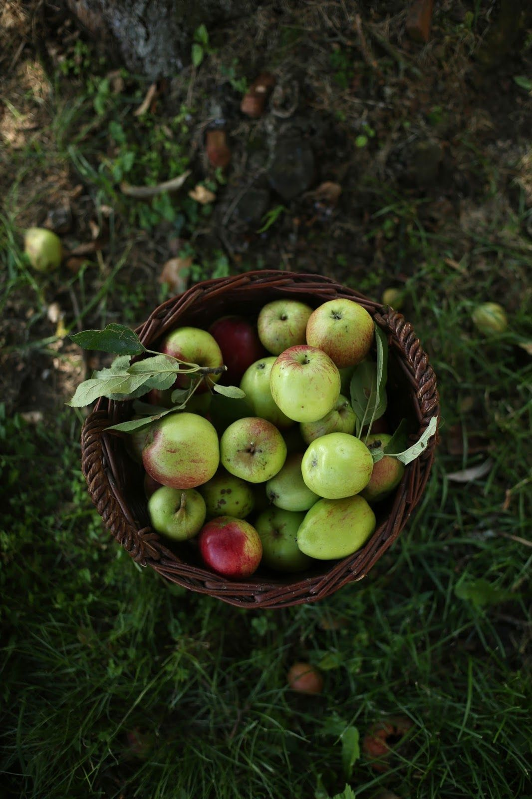 our food stories: glutenfree & vegan apple pie