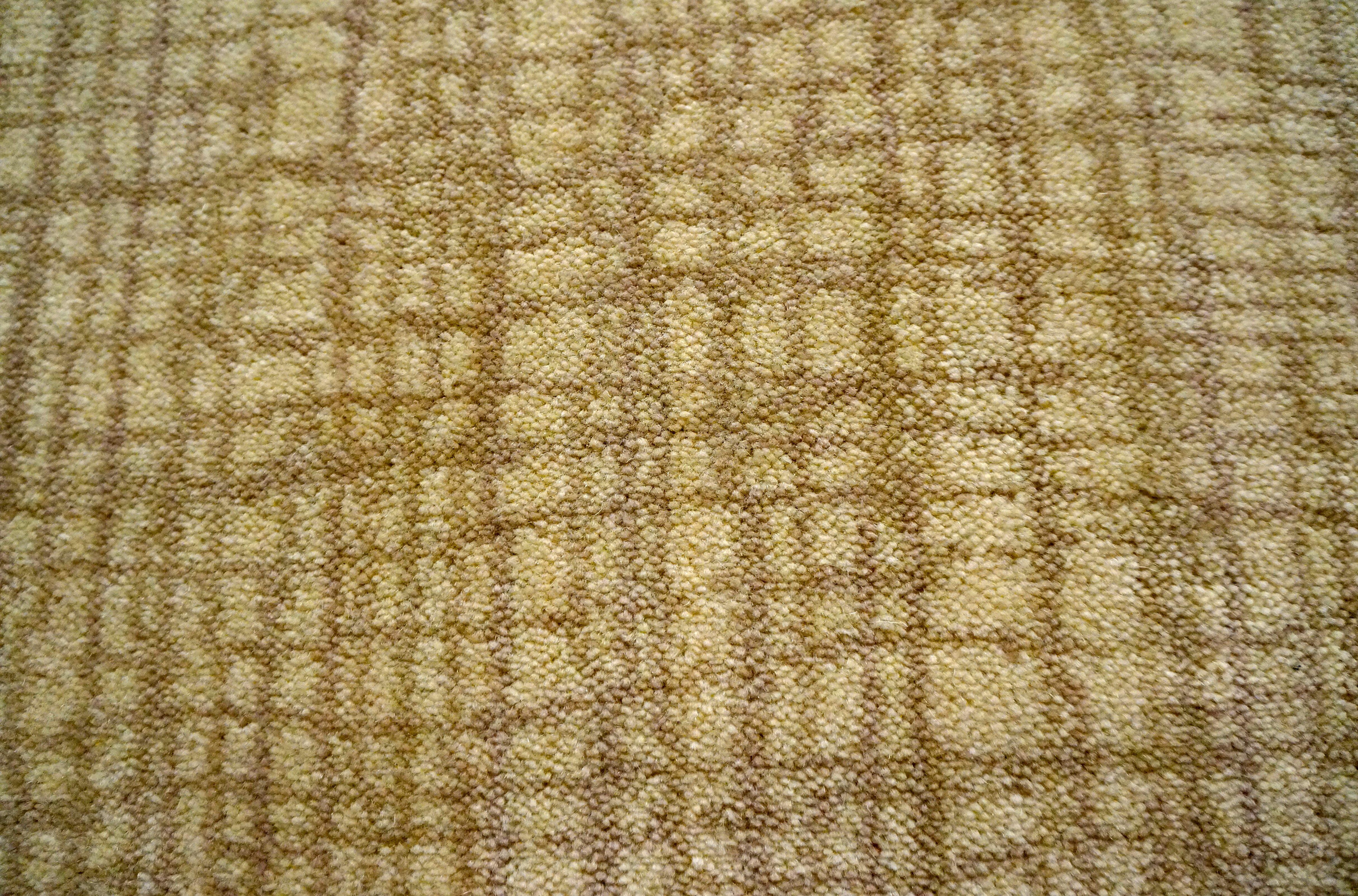 Karastan Wool Carpet New Introductions 2014 Wool Carpet