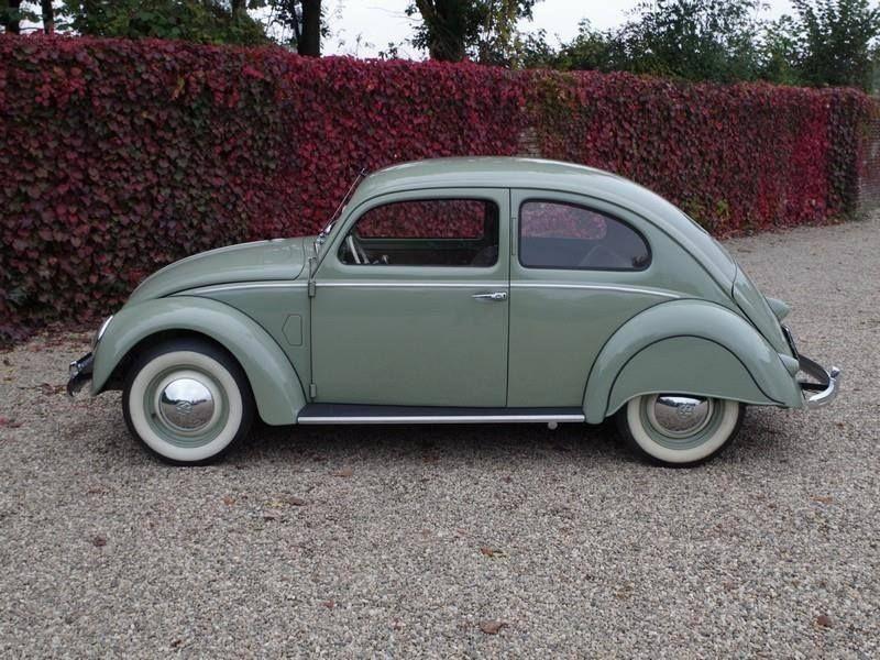 1952 Vw Beetle Split Window Vw Beetles Volkswagon Volkswagen