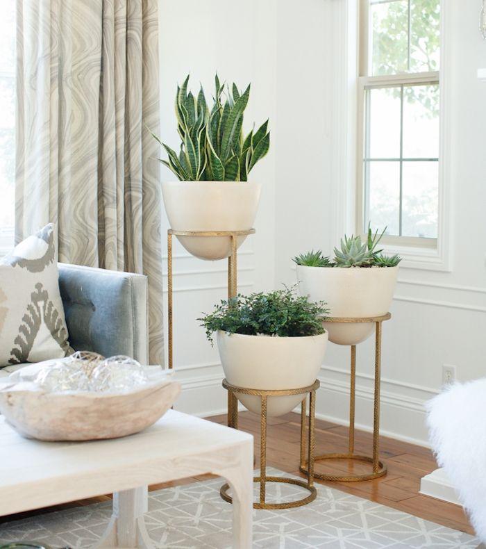 1001 Idees Living Room Plants Room Corner Bedroom Plants