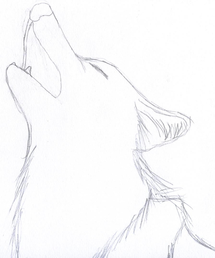 66bc78664 Best 25+ Simple wolf drawing ideas on Pinterest | Simple ... | To Do ...