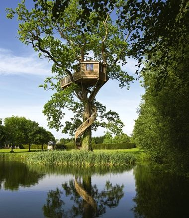 Treehouse in Sologne, France, includes all the comforts of home is created around the shape of the tree. The cabin (pictured) is perched a lofty 10 metres off the ground.